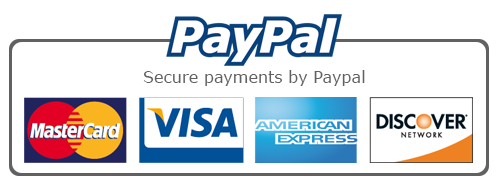 paypal service